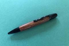 """Pen """"H""""  - $25"""
