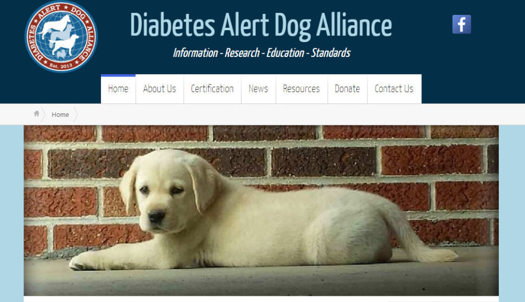 Grants For Service Dogs Diabetes